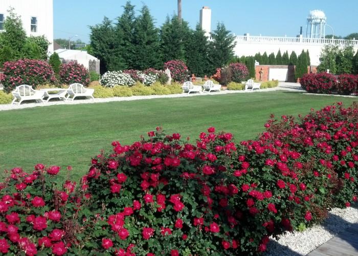 Luxury Hotel Suite Lodging in Dover Delaware by Dover Garden Suites