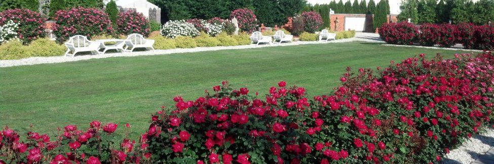 dover garden suites. Dover Garden Suites F